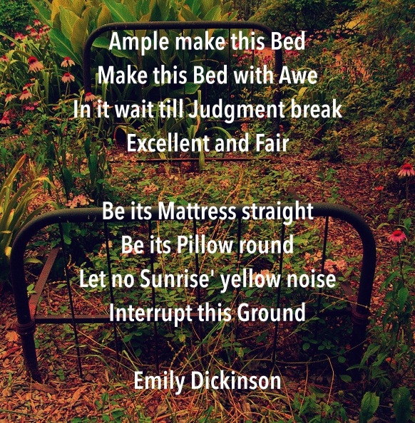 Ample_Make_This_Bed