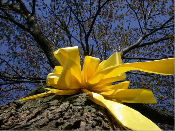 yellow-ribbon1
